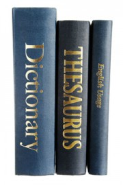 reference books - dictionary, thesaurus, and English usage guide