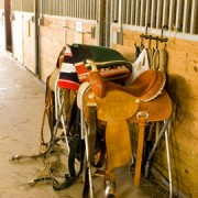 horse barn interior with horse tack
