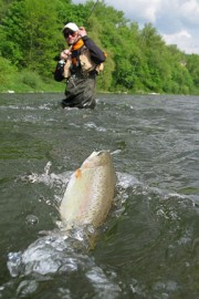 fly fishing in a russian river