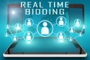 Real-time Auction Bidding Concept