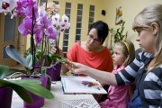 Schooling a Child about Flowers