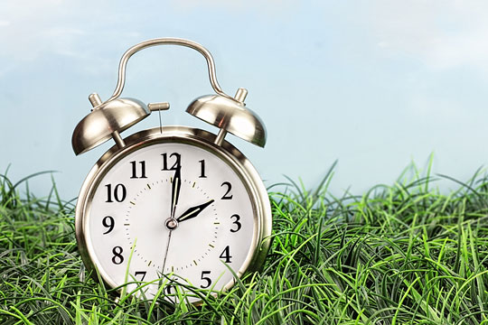 alarm clock on green lawn